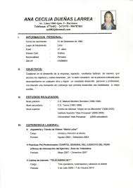 Cv Meaning Resume Free Resume Example And Writing Download