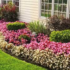 backyard flower garden ideas and