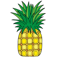 pineapple drawing. drawing of a pineapple