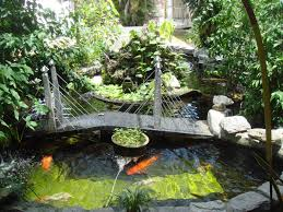 Pond Design Catchy Collections Of Koi Fish Pond Design Top 25 Best Koi Ponds