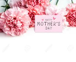 Paper Carnation Flower Happy Mothers Day Message On Paper And Pink Carnation Flower Stock