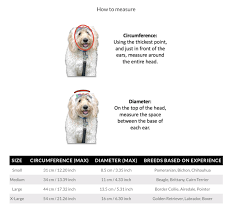 Size Chart K9caps Dog Hat Size Chart To Help Find The