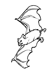 Vampire Bat 1 halloween ★ clipart for free page 2; gallery of funny halloween on scary pumpkin stencils free printable