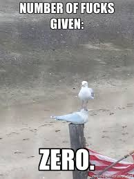 Number of fucks given: ZERO. - Uncaring Seagull | Meme Generator via Relatably.com
