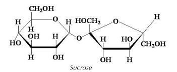 ch20h oh h hho ho oh oh h sucrose