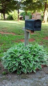 Mailbox landscaping ideas Club Mailbox Landscaping Ideas Modern On Other Throughout 36 Best Around Images Pinterest Ilwebdeipazzivideochatclub Other Mailbox Landscaping Ideas Landscaping Ideas For Mailbox Area