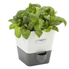 indoor herb garden kit. Indoor Herb Garden Kit 47 On Creative Small Home Remodel Ideas With O