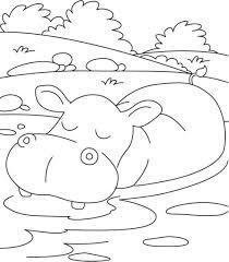 Hippo Coloring Pages Lezincnyccom