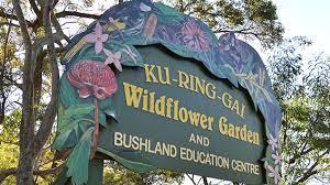 ku ring gai wildflower garden