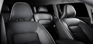 leather vs cloth seats what s best
