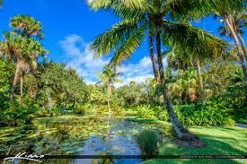 coconut tree pond mckee botanical garden vero beach florida