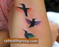 Jaký Je Význam Tetování Kolibříků