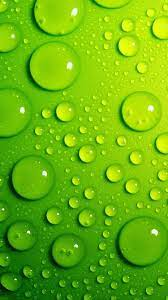 Green iPhone Wallpapers ...