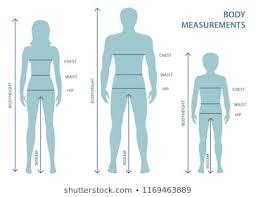 body measurement chart for men measurement body stock vectors images vector art