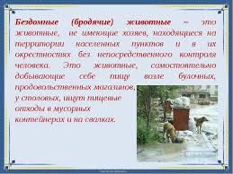 Реферат на тему Бездомные животные  Бездомные бродячие животные это животные не имеющие хозяев находящиеся