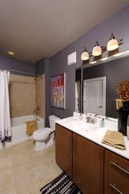 rental apartment bathroom ideas. Bathroom Remodel Small Space Toilet And Design Renovation Cost Ideas Rental Apartment