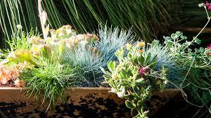 Container Garden Design Awesome Design