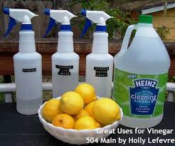 How I Clean Naturally with Vinegar