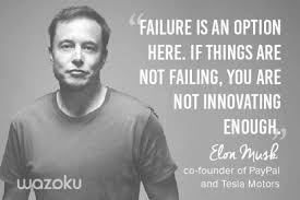 Innovation Quotes Adorable Innovation Quote Elon Musk PaypPal And Tesla Motors Innovation