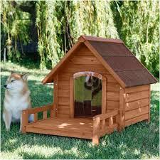 outdoor dog kennels for elegant home design outdoor dog kennels for new unique small
