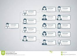 Organization Chart Vector Organization Chart Stock Vector Illustration Of