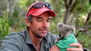 essay koala essay