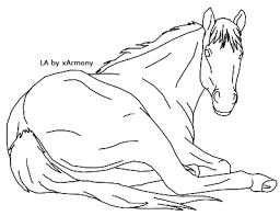 Kleurplaat Pony Hoofd De 40 Allerleukste Paarden Kleurplaten Voor