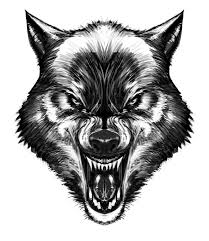 werewolf face drawing. Delighful Drawing Werewolf Tattoo Wolf Face Drawing Small In Drawing D