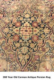 professional carpet cleaning companies that offer oriental rug cleaning services deal with various carpet problems like urine food spillage and stools