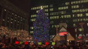 christmas tree lighting chicago. City Of Chicago Accepting Official Christmas Tree Nominations Lighting A