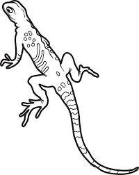Small Picture lizard coloring pages for kids printable coloring page of a