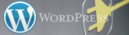 Image result for installing a secure wordpress plugin