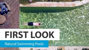 Natural looking in ground pools Simple Backyard First Look Natural Swimming Pools Choice First Look Natural Swimming Pools Choice Youtube