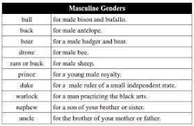 Masculine Gender Noun Chart A Zabdiel Feliz Lebrun Flickr