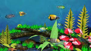 Fish Wallpaper Download ...