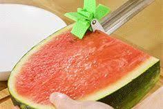 <b>Melon Slicer Cutter</b> Tool in 2019 | <b>New</b> & Interesting Finds ...