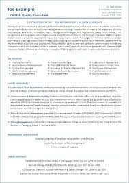 Government Resume Examples Government Resume Examples With Resume ...
