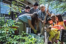 green beans environmental education