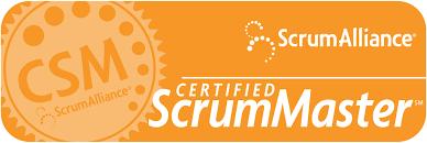 Pmi Logo On Resume Sample Virtren Com