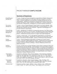 Resume Career Summary Examples Writing Sample It Executive Ex Sevte