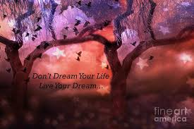 Fantasy Dream Quotes Best of Inspirational Surreal Fantasy Nature Life Quote Live Your Dream