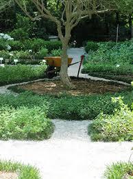 herbs in the florida garden gardening