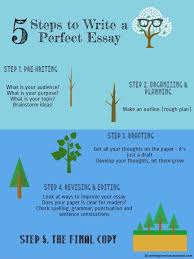 essay on a perfect day an essay on a perfect day