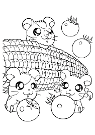 Small Picture Cute little hamster coloring pages ColoringStar