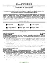 Special Mechanical Project Manager Resume Sample Cv Of An Engineer