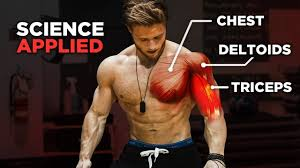 the most effective science based push workout chest shoulders triceps science applied ep 1
