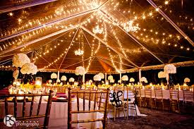 deering estare wedding clear tent string lights