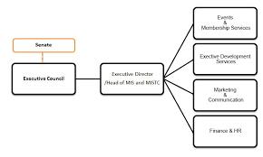 Singapore Power Organisation Chart Organisation Structure