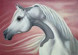 s gift arabian horse head