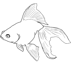 Coloring page with schools of fish. Free Printable Fish Coloring Pages For Kids
